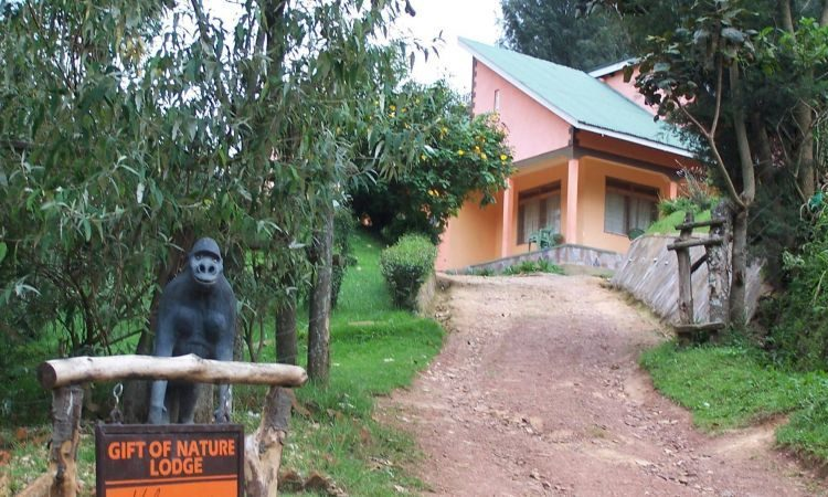 Gift of nature lodge