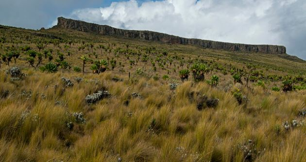 Attractions in mountain elgon national park