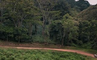 Drive time to Bwindi Impenetrable National Park
