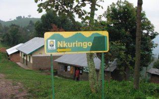 Nkuringo Community Conservation and Development Foundation (NCCDF)