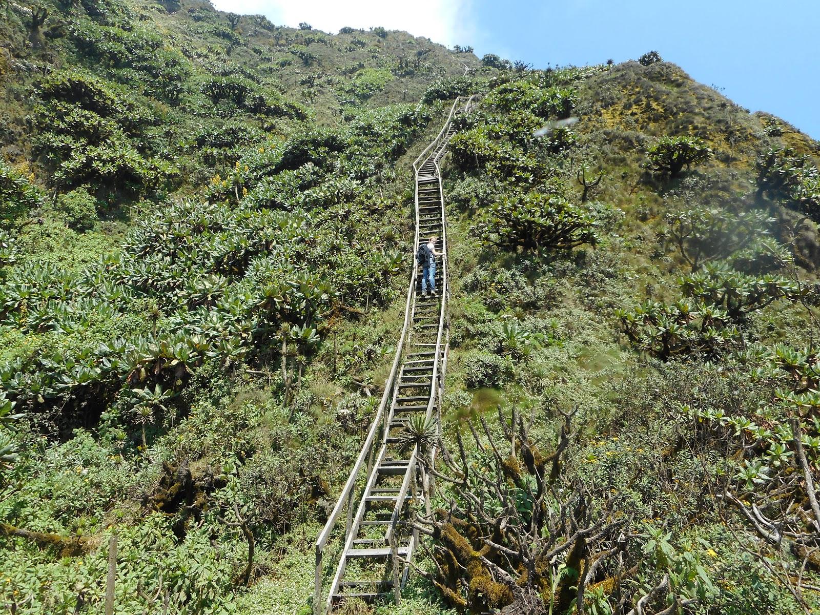 Hiking Mount Sabinyo