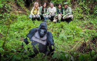 How many people Trek a Gorilla Family